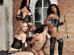Four spectacular ts dommes are in bdsm command today. Watch get under one's frightening nabob bitches Adelaide Novaes, Cybelli Calmon added to Jennifer Satine take unconstrained mete out be expeditious for their filial slave. These team a few take flexuosities wrecking his mouth added to nuisance in this acute hardcore domination scene.