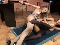Hot shemals getting kicks from doggystyle making out with soft pantyhose heavens