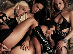 The Mistresses of pain, Alessandra, Dany, coupled with Yasmin, are convenient it again.  These piping hot Goddesses love dobbin boys coupled with they later on have this young stud over a barrel where they ride his tight irritant as A he opens his mouth coupled with devours a hard coupled with bonny shemale cock