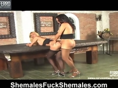 Sexy shemales bringing each other ultimate penance in ass-banging corrode